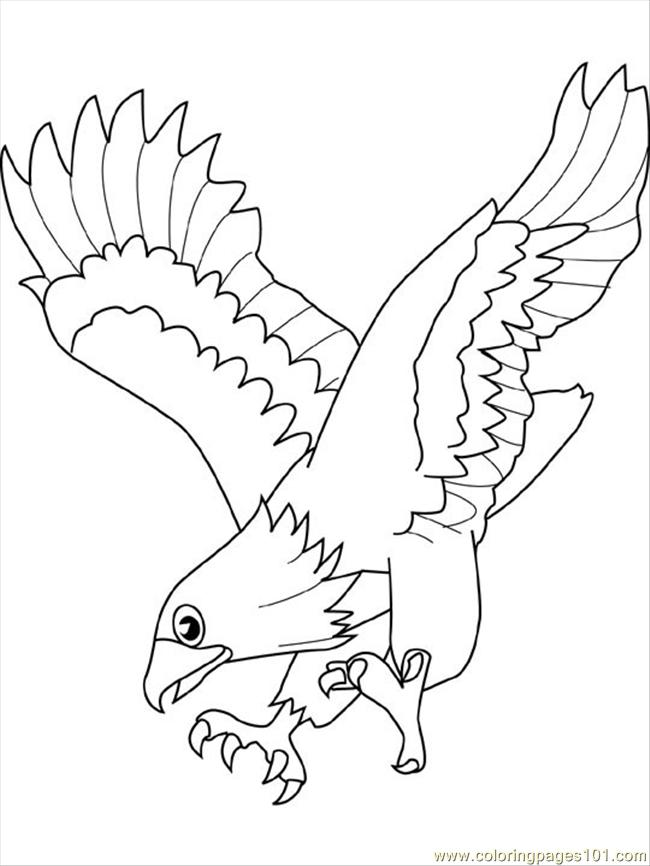 Flying Eagle Pencil Drawing at GetDrawings.com | Free for personal ...