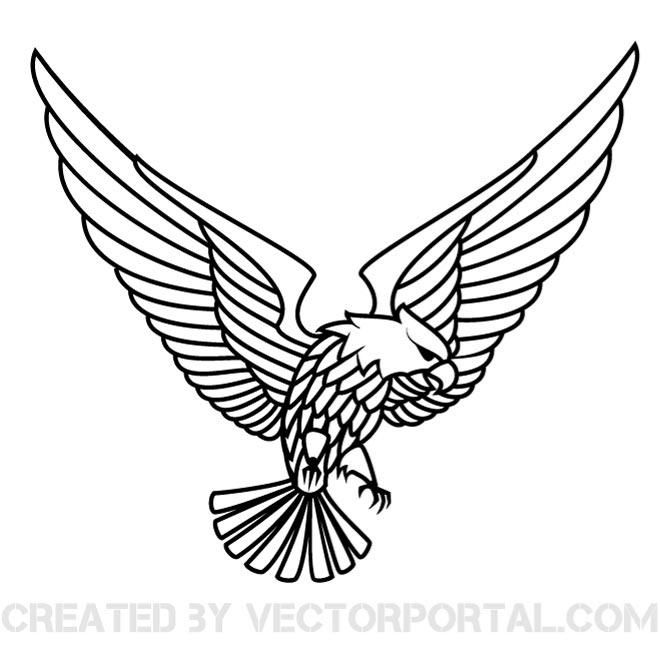 660x660 The Best Eagle Vector Ideas On Eagle Head, Eagle