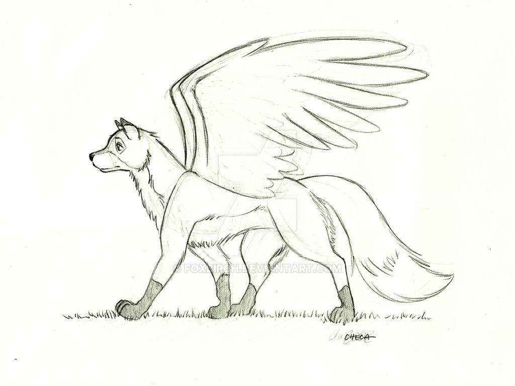 1024x768 Flying Fox By Foxbirch