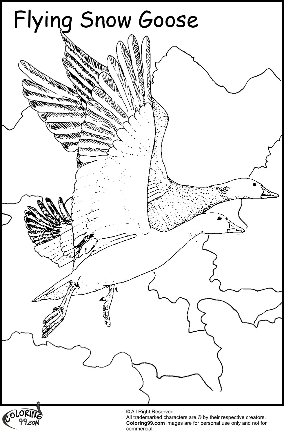 980x1500 Goose Coloring Pages Team Colors