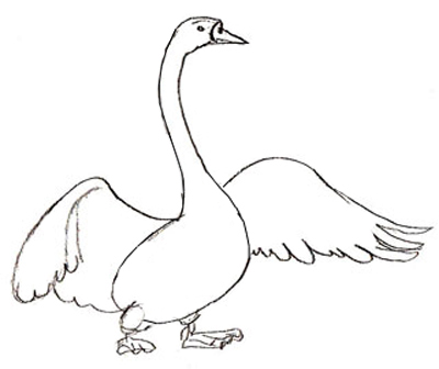400x336 How To Draw A Swan