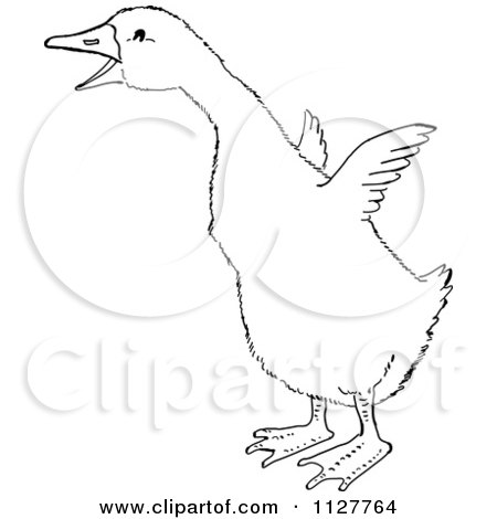 450x470 Cartoon Of A Retro Vintage Black And White Gosling Flapping Its