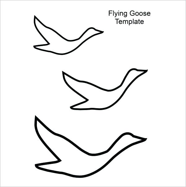 600x605 Coloring Pictures Of Birds Flying Birds Flying Up Drawing Gallery