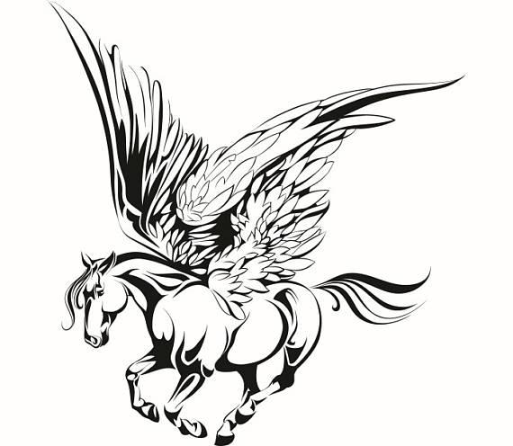 570x496 Pegasus