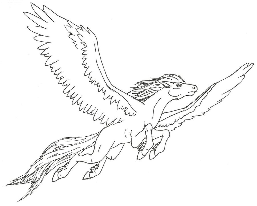 900x722 Pegasus