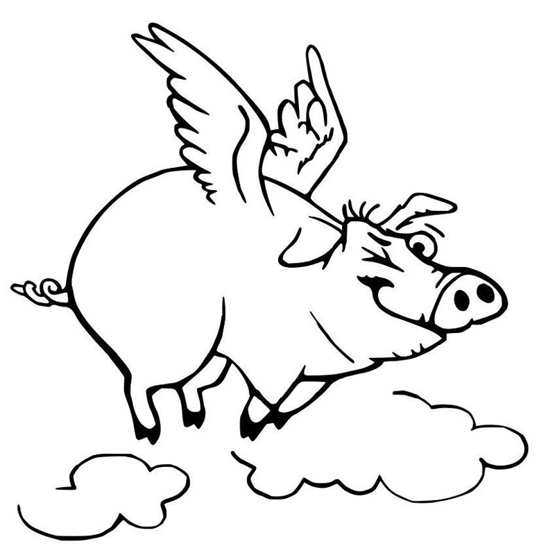 800x800 Flying Winking Pig Vinyl Car Sticker Decal Flying Pig Gifts