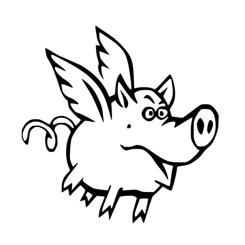 800x800 Sassy Flying Pig Vinyl Car Sticker Decal Flying Pig Gifts