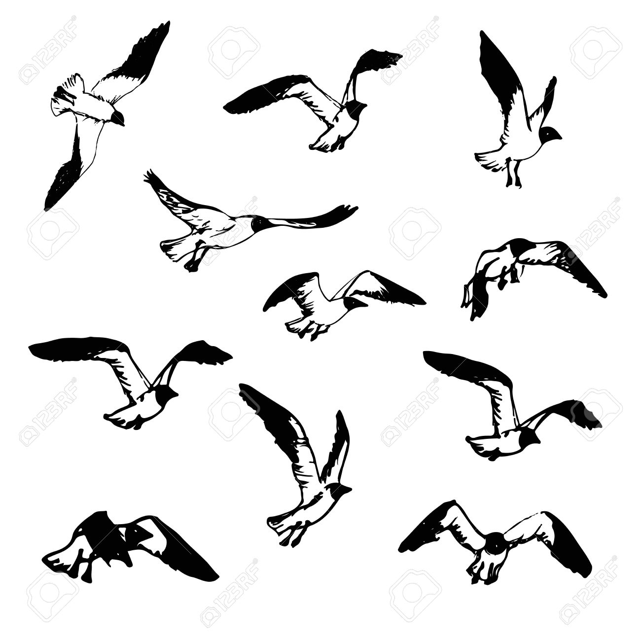 1300x1300 Hand Drawn Flying Seagulls. Black And White Illustration Sketch