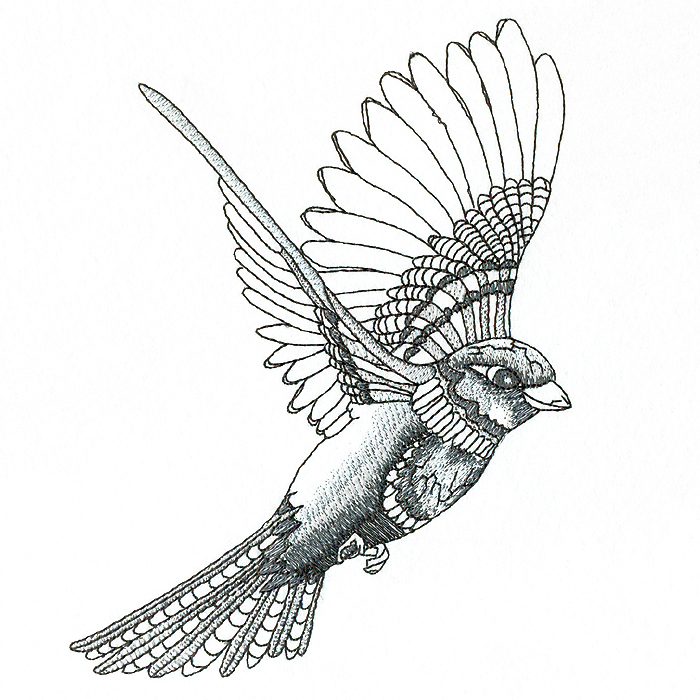 002ea4da627da Flying Sparrow Drawing at GetDrawings.com | Free for personal use ...