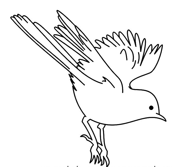 699x658 Flying Sparrow Outline