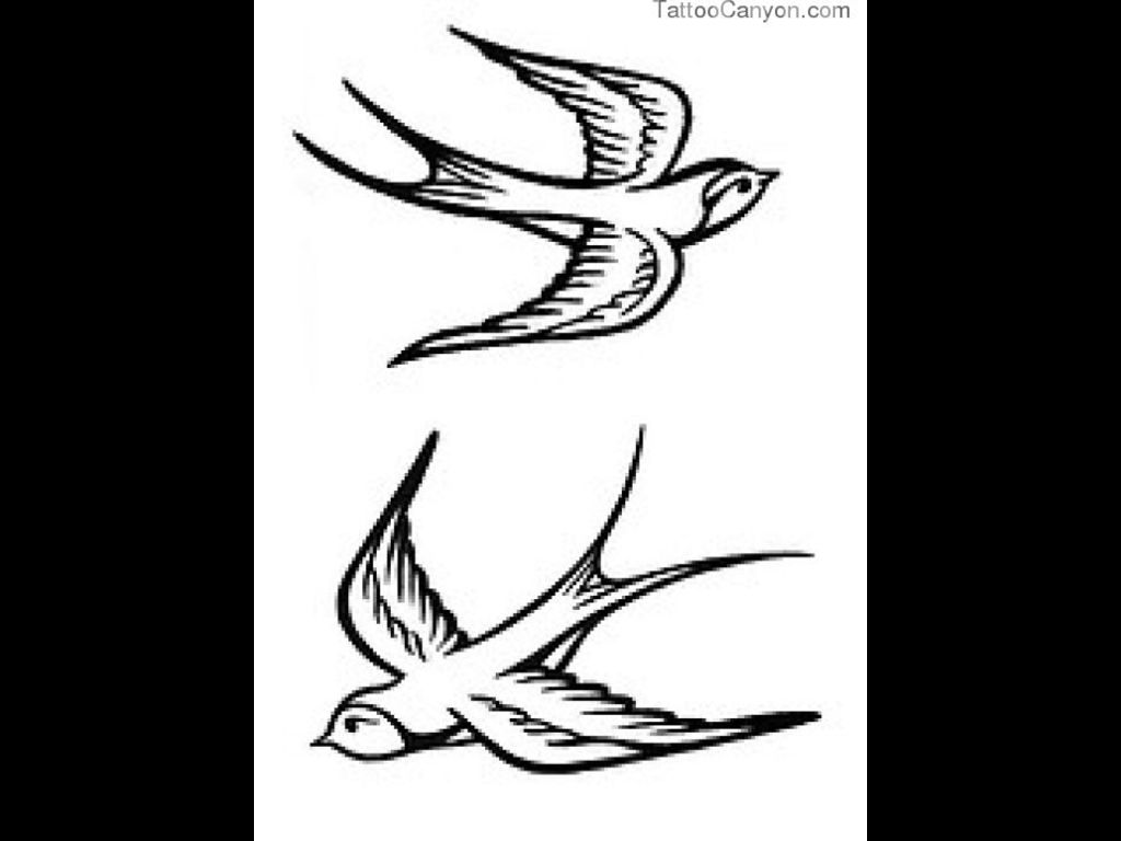 1024x768 Flying Sparrow Tattoos