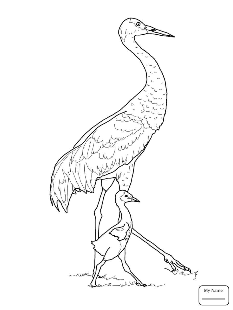 967x1289 Printable Flying Bird Outline Printable