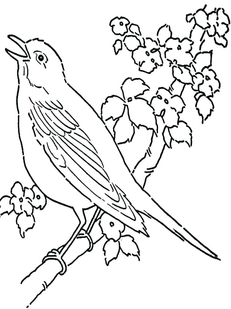750x1000 Coloring Pictures Of Birds Flying Sparrow Online Coloring Coloring