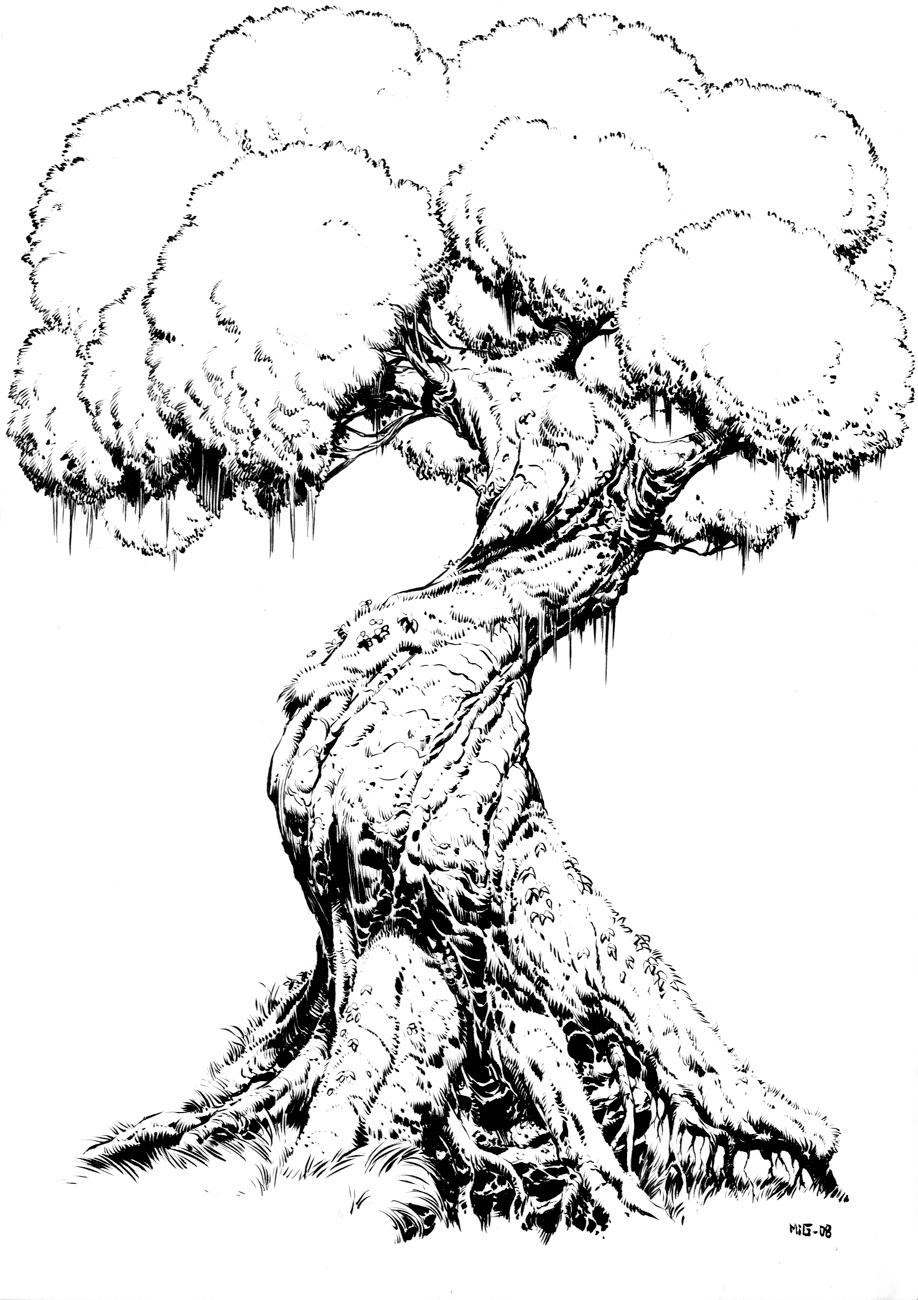 918x1300 Gnarled Tree
