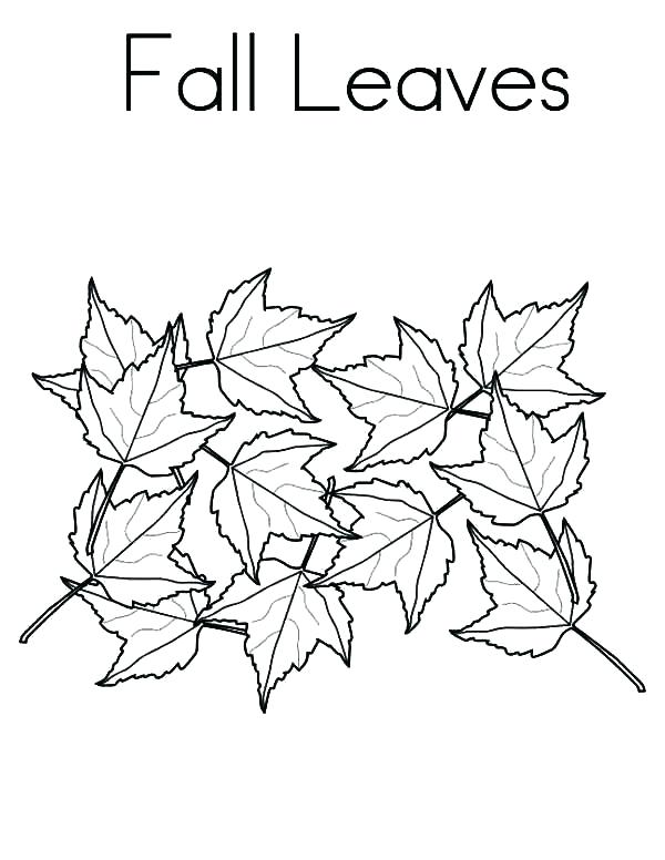 600x776 Top Rated Fall Leaves Coloring Pages Images Fall Coloring Pages