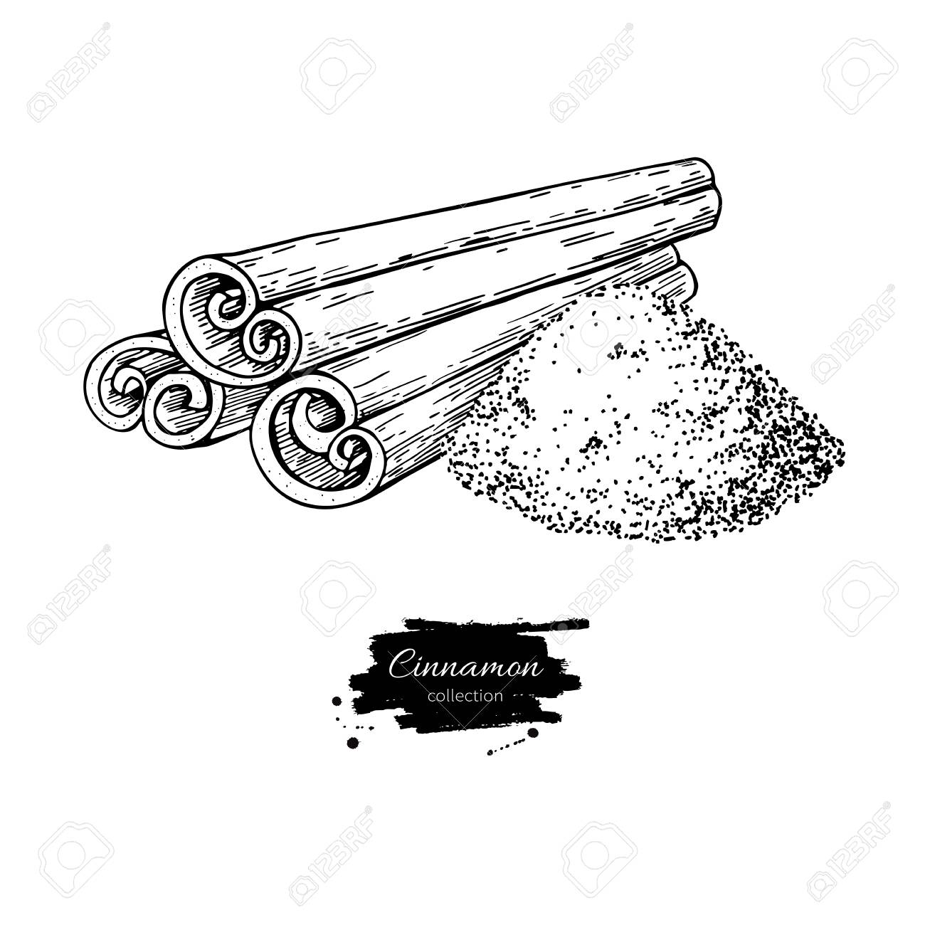 1300x1300 Cinnamon Stick And Powder Vector Drawing. Hand Drawn Sketch