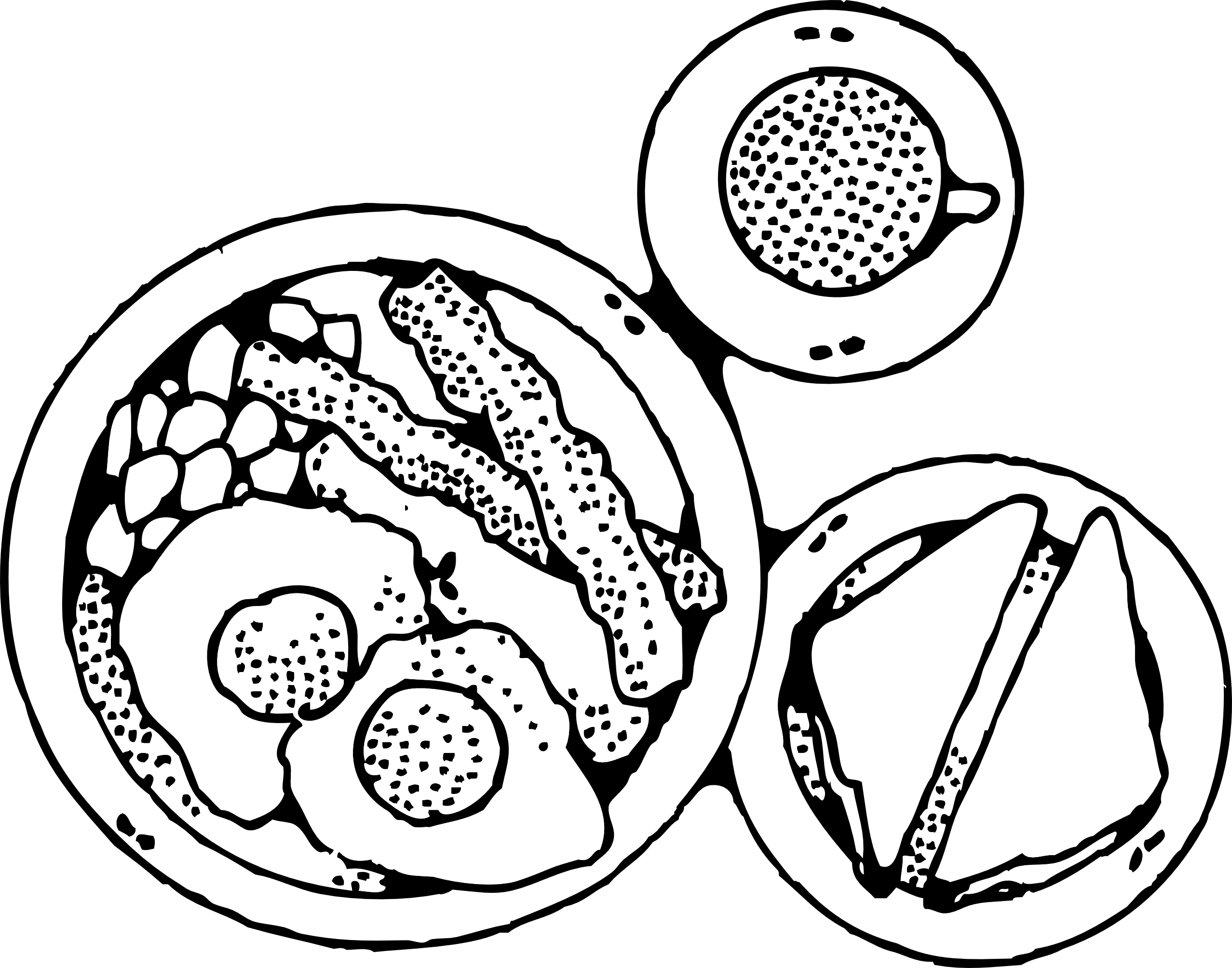 2555x2008 Plate Of Food Clipart Black And White 1 Clipart Station