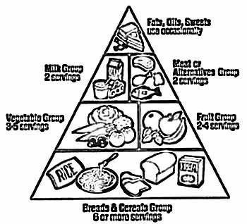350x318 Food Pyramid Coloring Pages