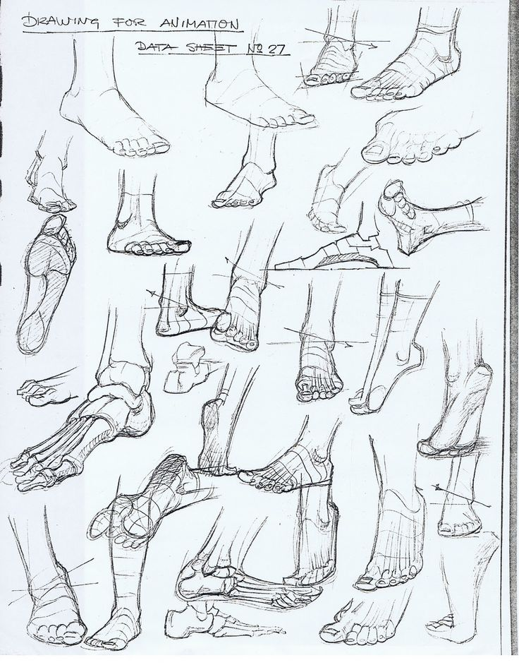 Foot Skeleton Drawing