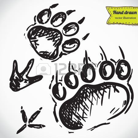 450x450 Animal Footprints Silhouettes Royalty Free Cliparts, Vectors,
