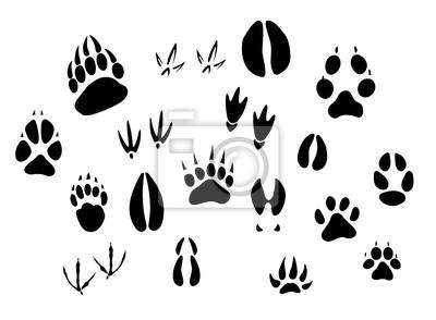 400x294 Animal Footprints Silhouettes Sticker We Live