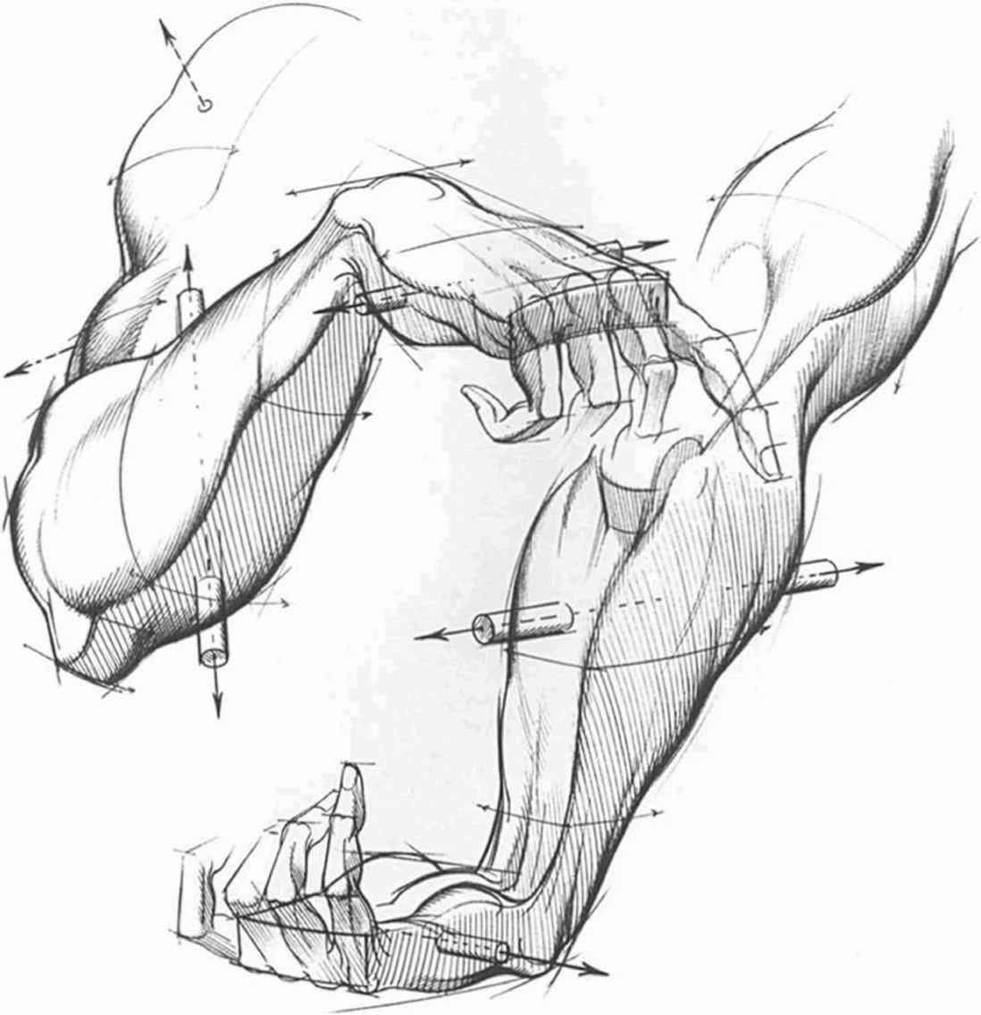 Foreshortening Hand Drawing at GetDrawings.com | Free for personal ...