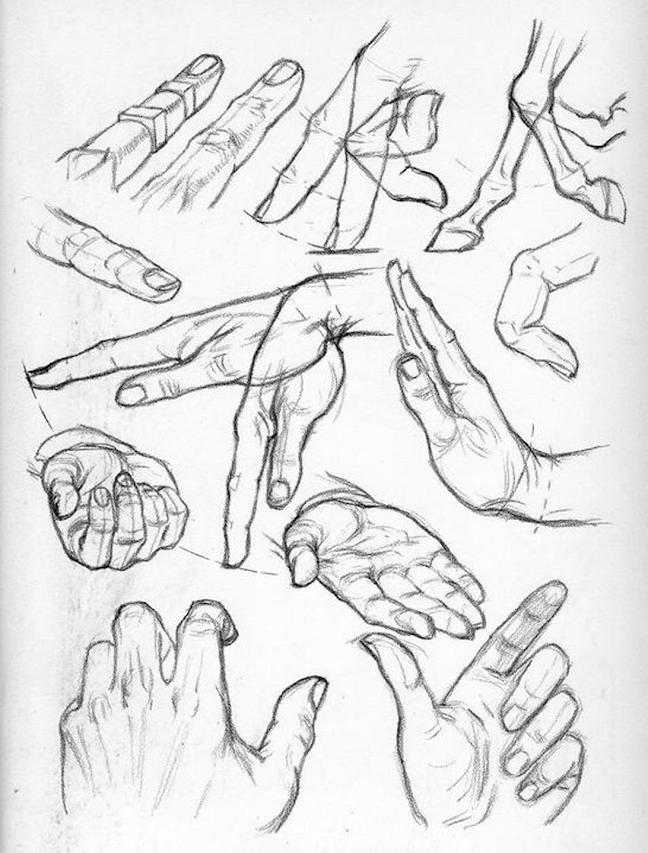 648x853 Praxis Part Five Handspart Five Hands