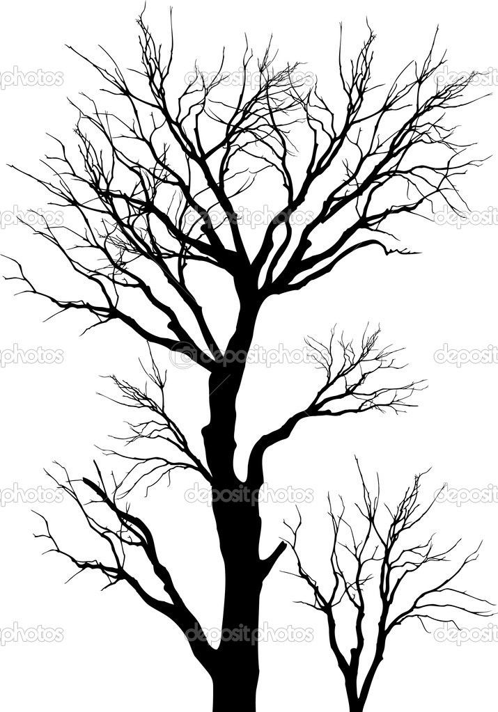 715x1023 Vector, Tree, Silhouette, Nature, Forest, Branches, Woods
