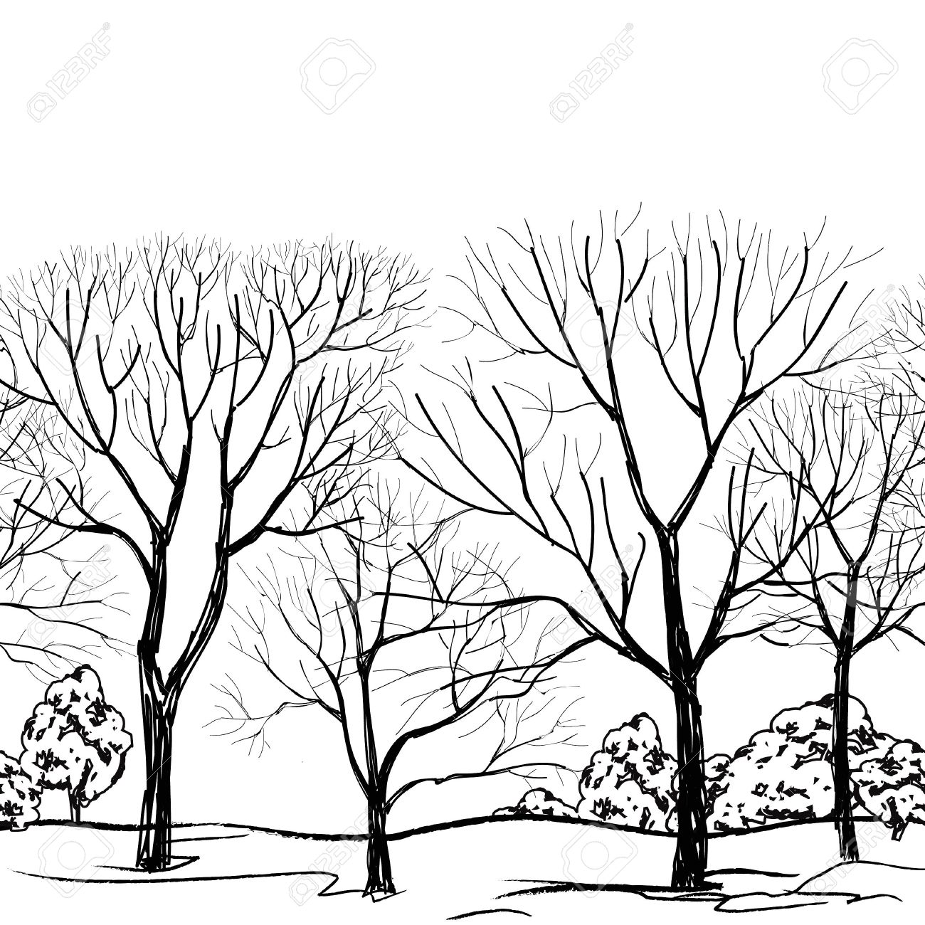 1300x1300 Tree Without Leaves Seamless Border Forest Seamless Background