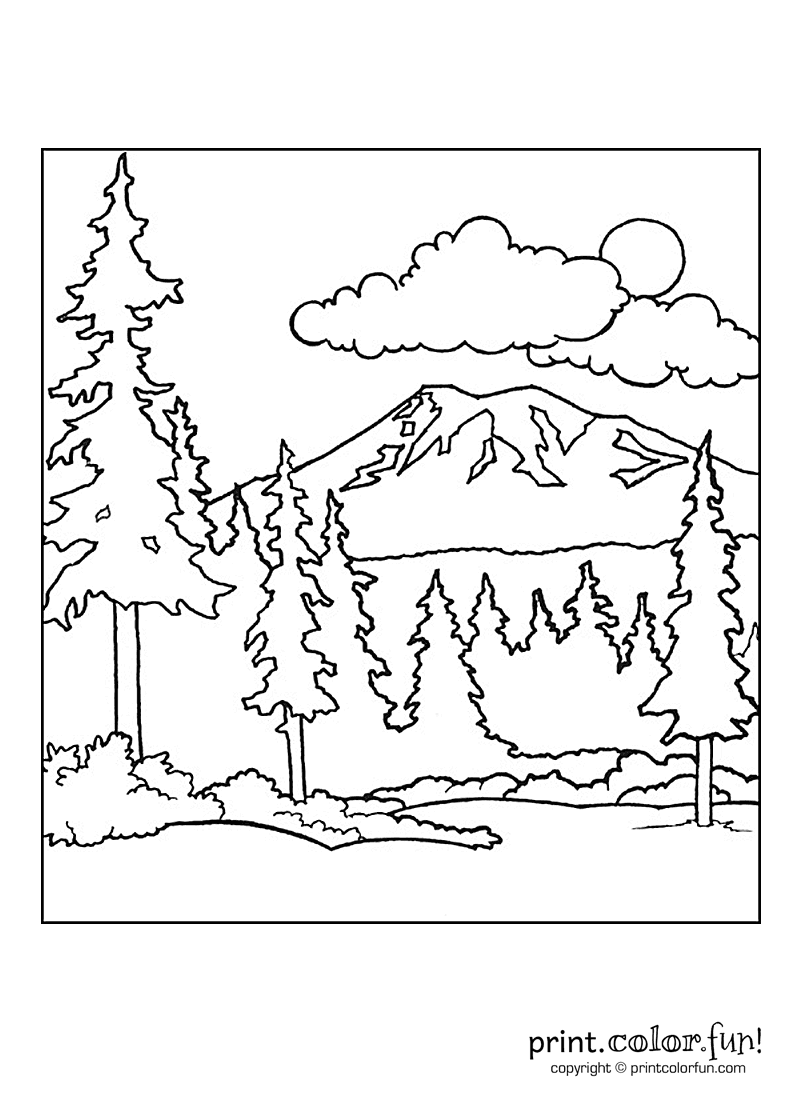 Forest Drawing For Kids At Getdrawings Com Free For Personal Use