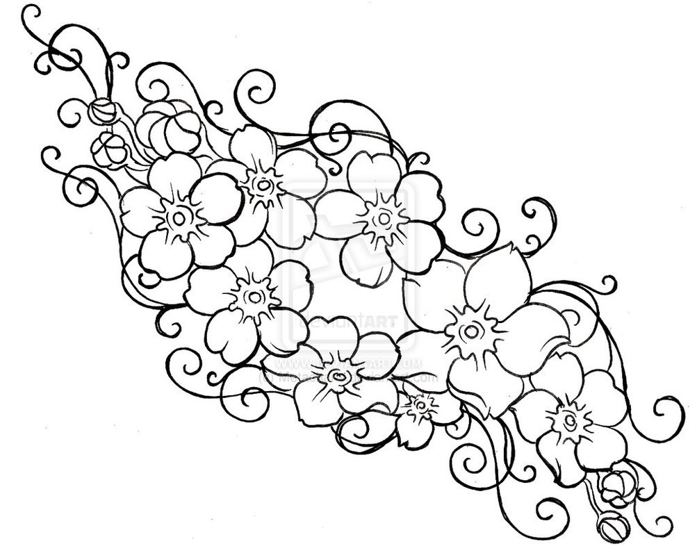 1003x796 Forget Me Not Flower Drawings Forget Me Not Flowers And Swirls