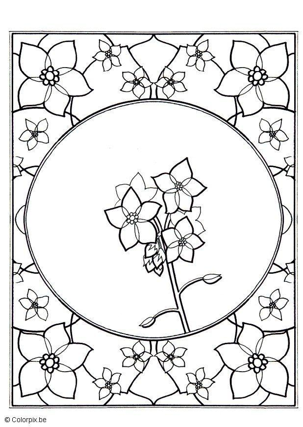 618x872 Coloring Page Forget Me Not
