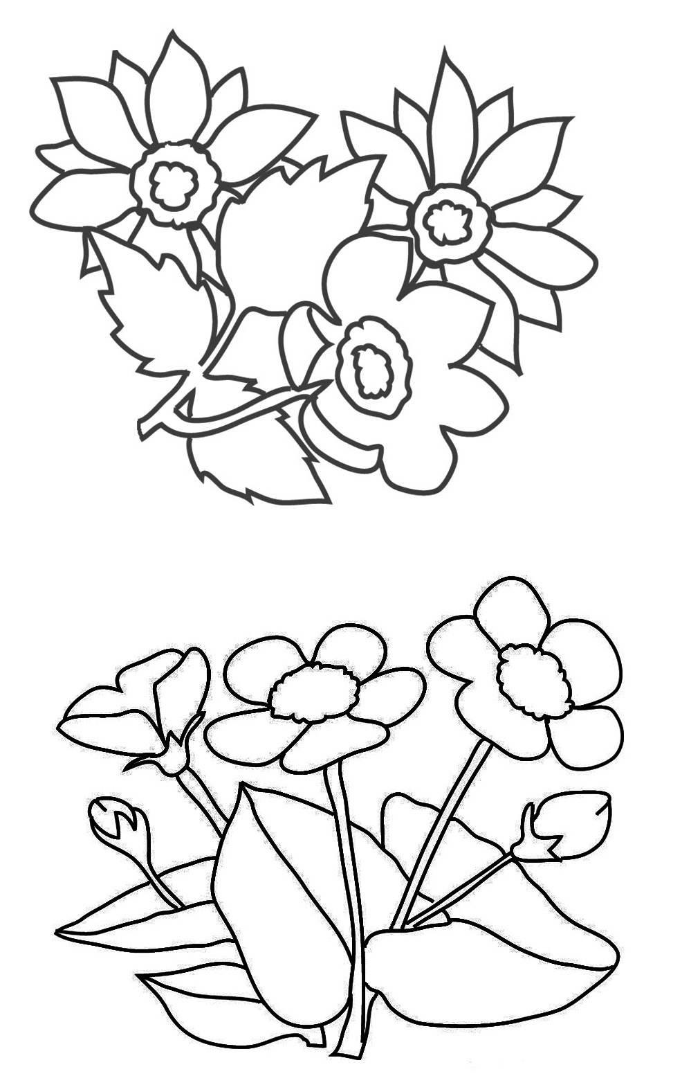 999x1567 Flower Coloring Pages