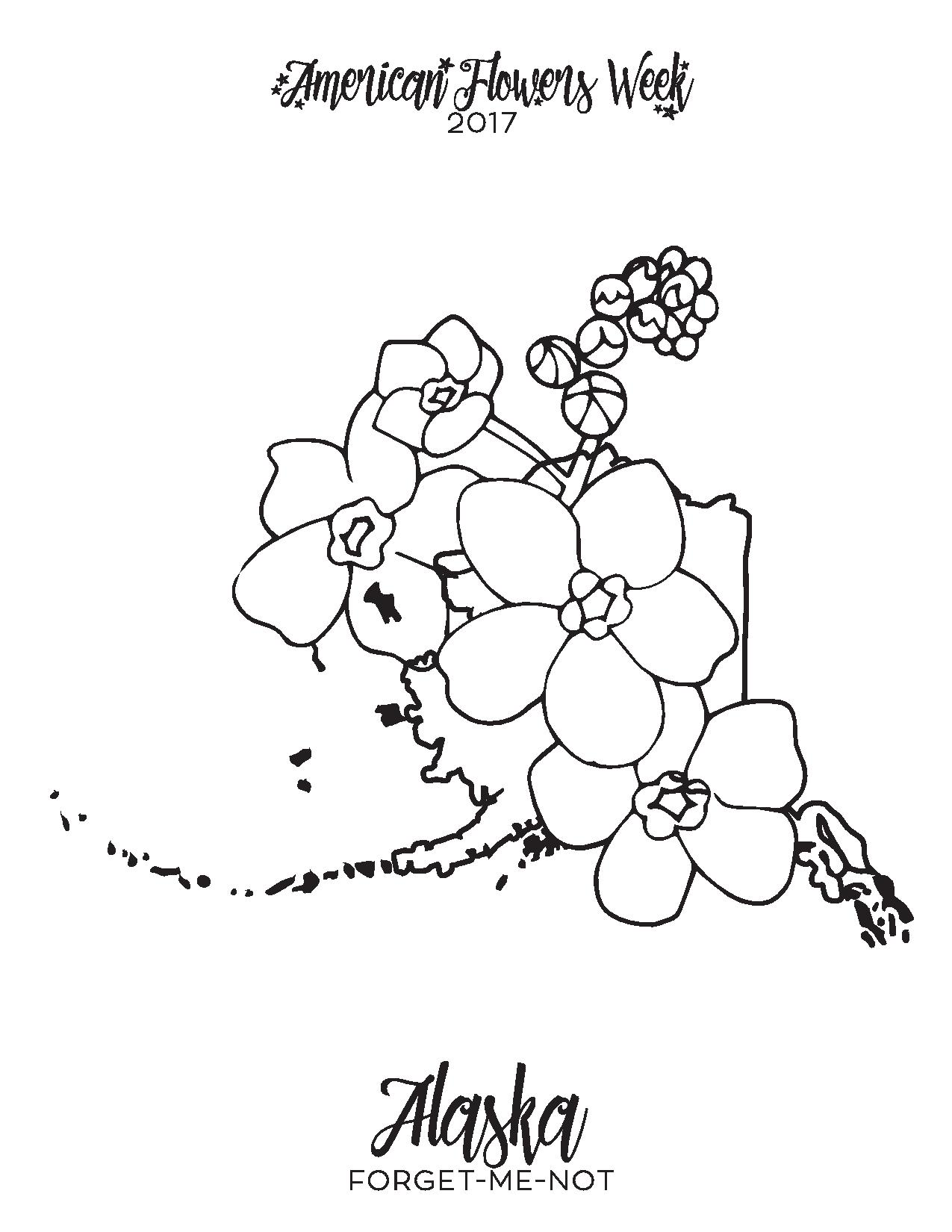 1275x1650 50 State Flowers Free Coloring Pages American Flowers Week