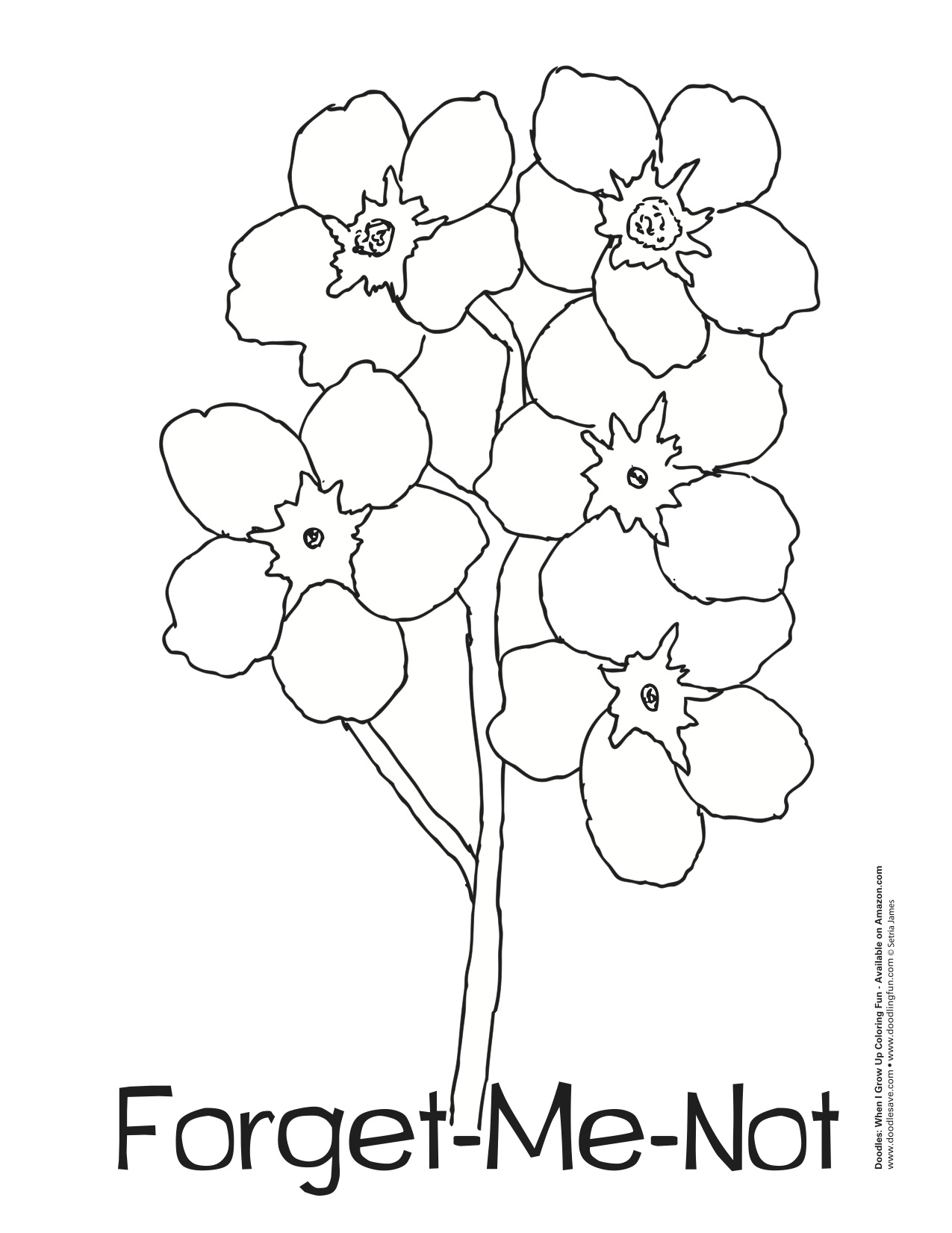 1275x1651 Ideas Forget Me Not Outline On Christmashappynewyears.download