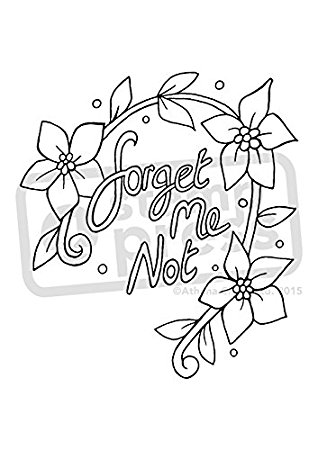 Forget Me Nots Drawing