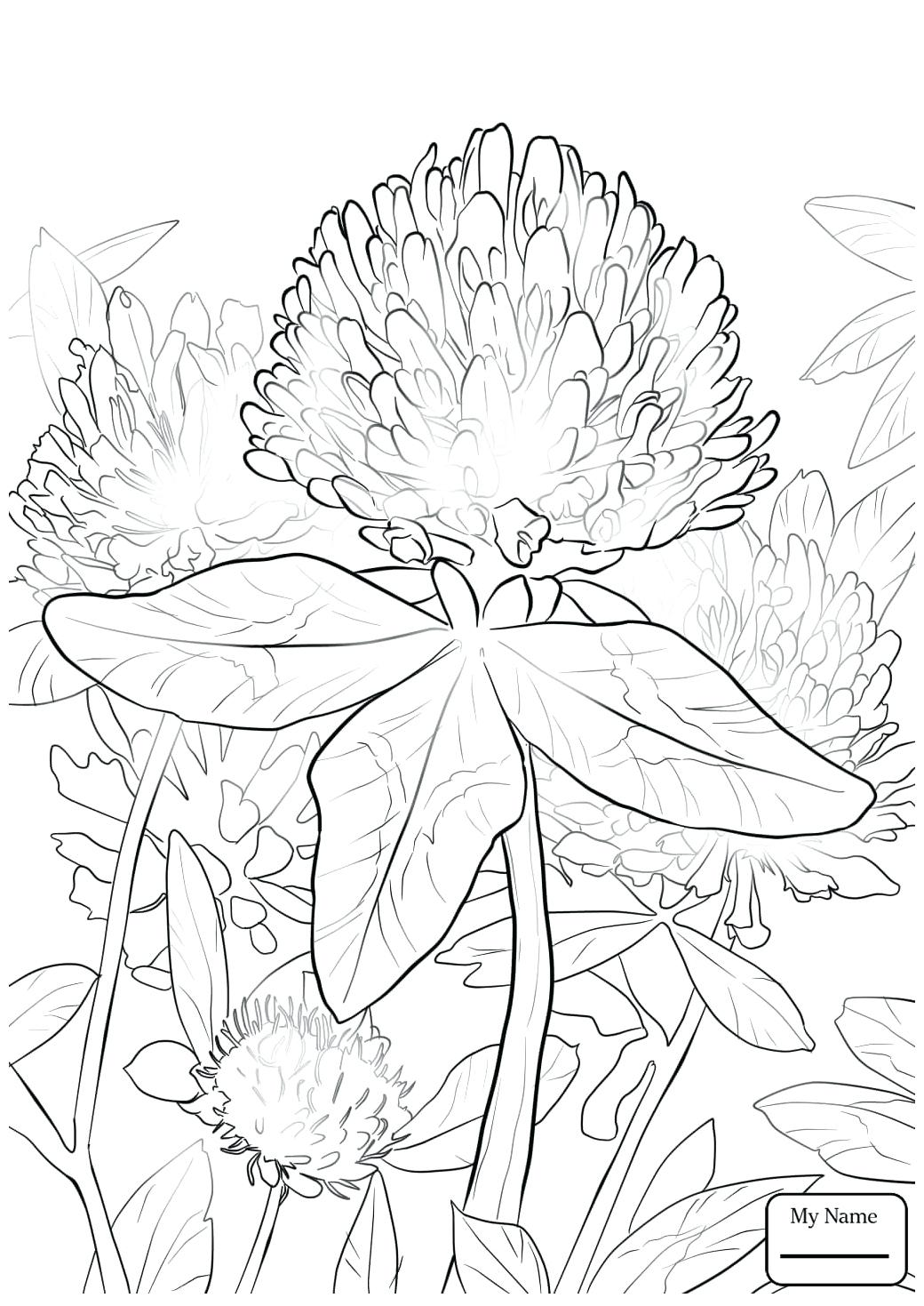 1040x1469 Coloring Four Leaf Clover Coloring Pages