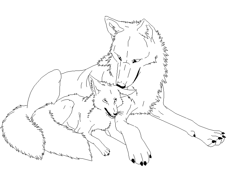 794x601 Wolf And Fox Lineart By Shifterdreams