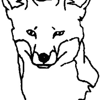 350x350 Fox Face Drawing Clipart Panda