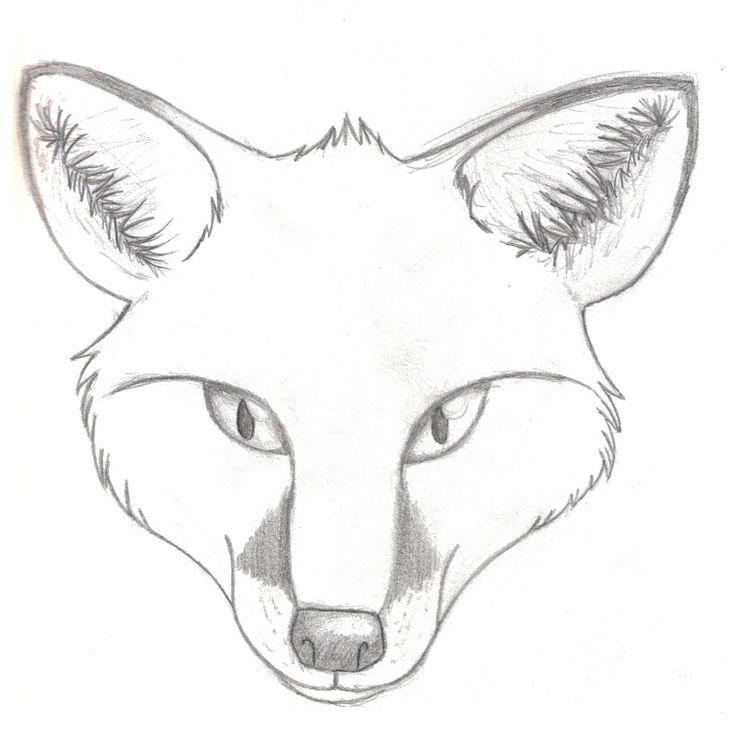 736x730 Drawn Fox Fox Sketch