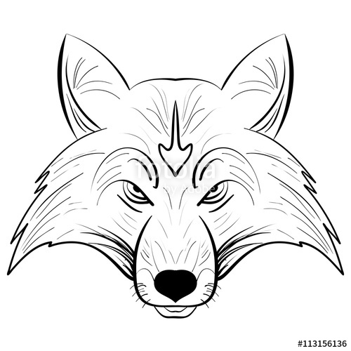 500x500 Hand Drawn Vector Fox Head.ink Sketch Fox Stock Image And Royalty