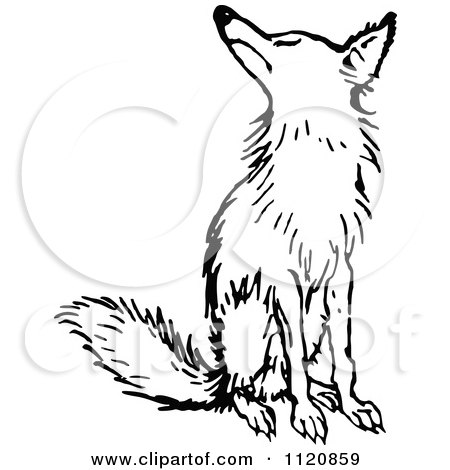 450x470 Clipart Silhouetted Fox In Black And White