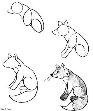 319x380 Drawn Fox Line Drawing