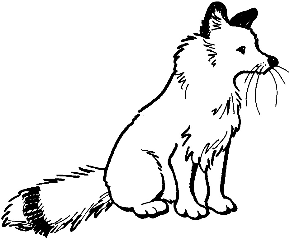 931x768 Cartoon Fox Coloring Pages And Pictures Fitfru Style