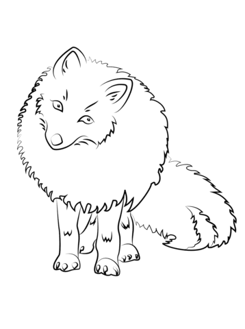 358x480 Cute Arctic Fox Coloring Page Free Printable Coloring Pages