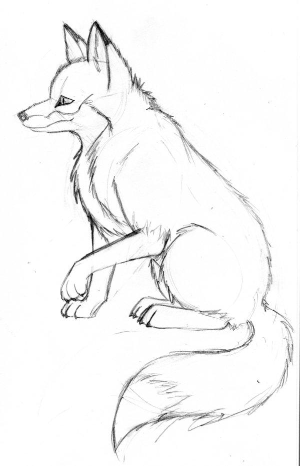 600x930 Fox Sketch By Vicnor
