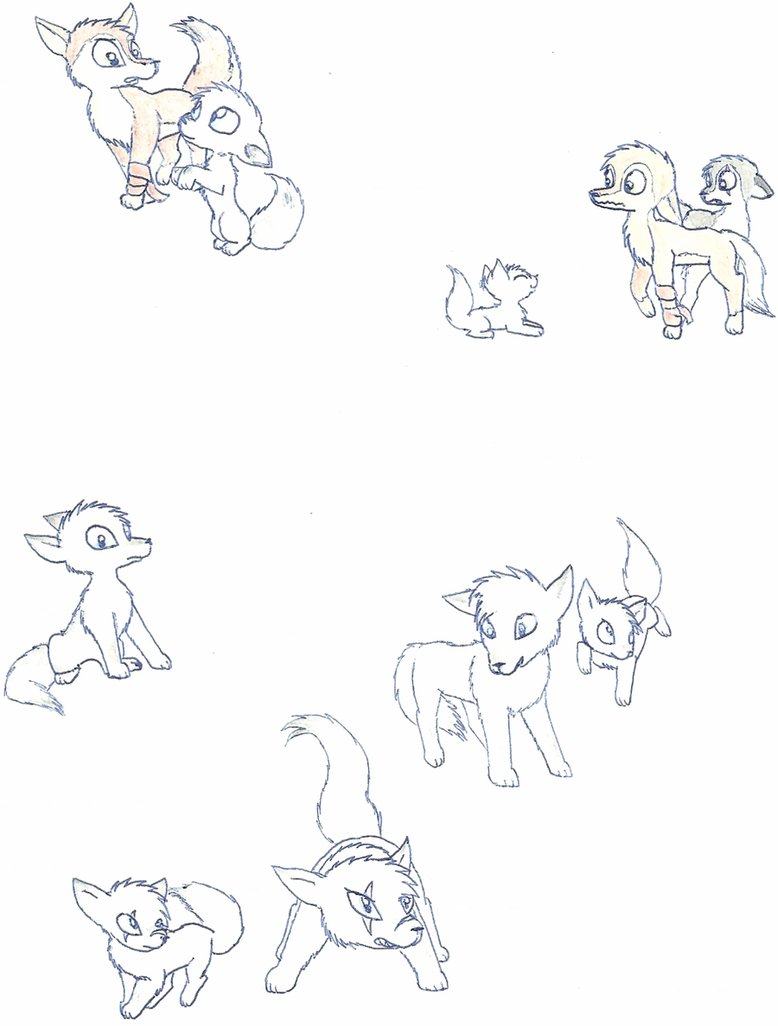778x1026 Wolf And Fox Drawings By Spitfiresonice