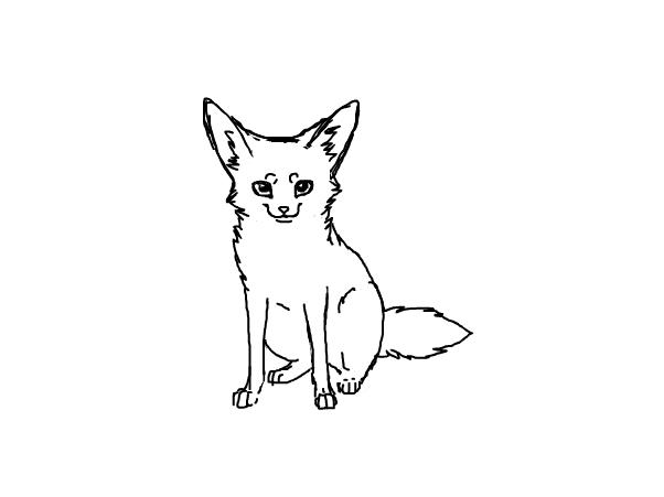 602x451 Fennec Fox