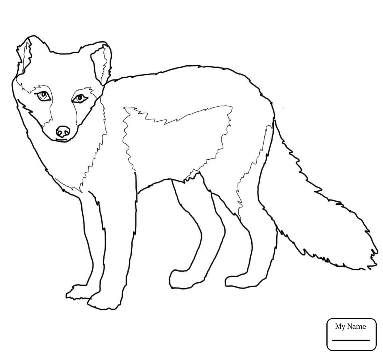1224x1142 Mammals Arctic Fox Jump Arctic Fox Coloring Pages For Kids