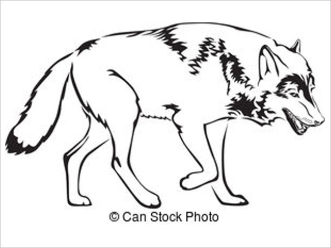 Fox Drawing Outline